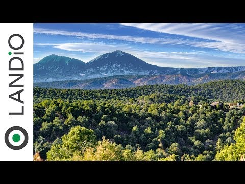Land For Sale in Colorado : 40 Acre Wooded Mountain Top Homesite near Trinidad, Colorado