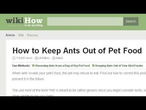 How-To Keep Ants Out Of A Dog Bowl Outside