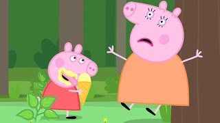 Peppa Pig English Episodes ⛲️ Peppa Pig's Time at The Mystery Fountain | Peppa Pig Official