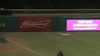 Lowe lays out in left against Tennessee