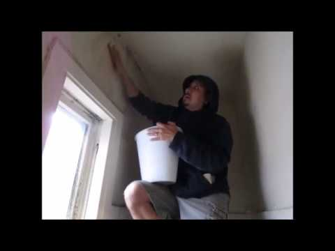 Killing the Mold on closet walls
