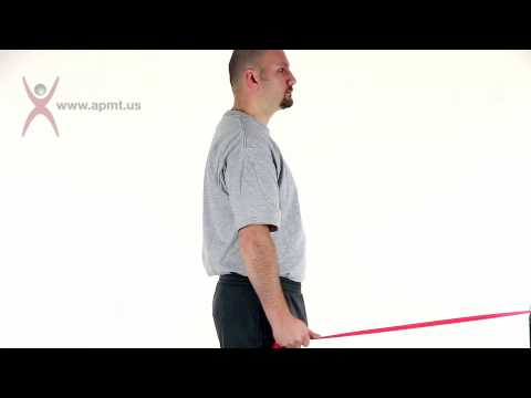 Exercise-Shoulder extension.m4v