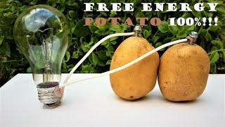 Free Energy Light Bulbs - 220v using Potato