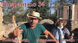 Ruspantino 36 - Holidays with Monnezza a Ferento