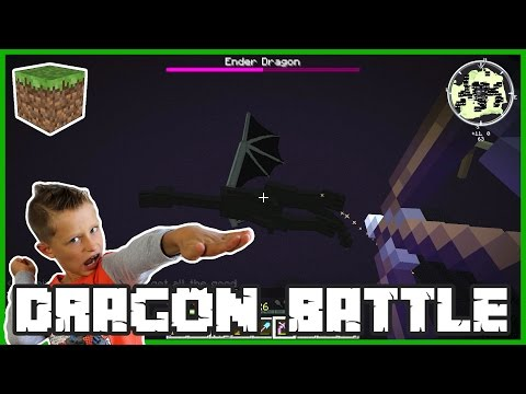 Ender Dragon Battle / Minecraft