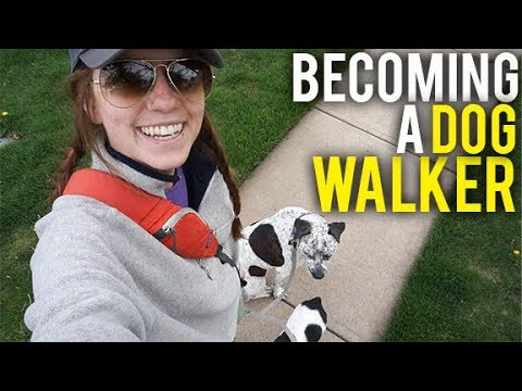 BECOMING A DOG WALKER ON THE ROAD | FULL TIME RV LIVING + CYSTIC FIBROSIS (5-1-18)