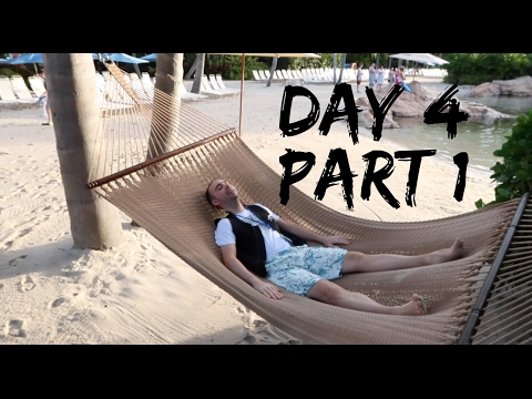 Walt Disney World Holiday - Christmas 2016 - Day 4 - Part 1 - Discovery Cove