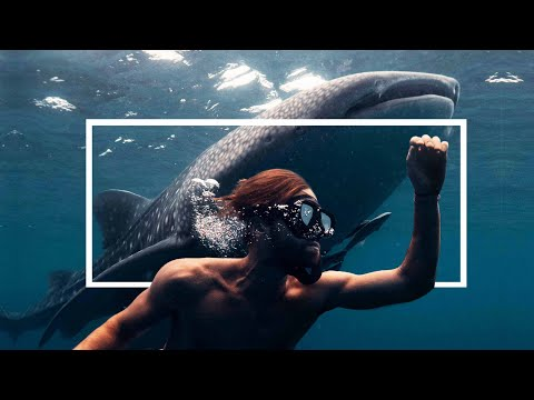 Xxx Mp4 Exploring Indonesia The Last Paradise 3gp Sex