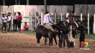 20º Rodeio Do Conesul - Gineteada - Domingo