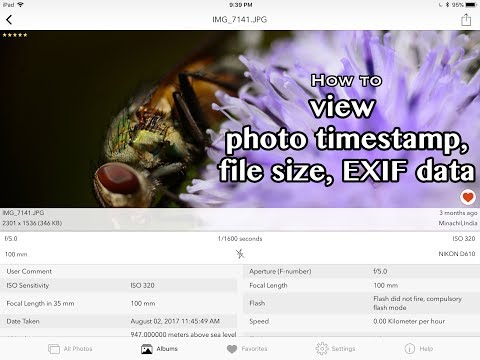 How to find the Photo Time Stamp and EXIF Metadata On iPhone or iPad
