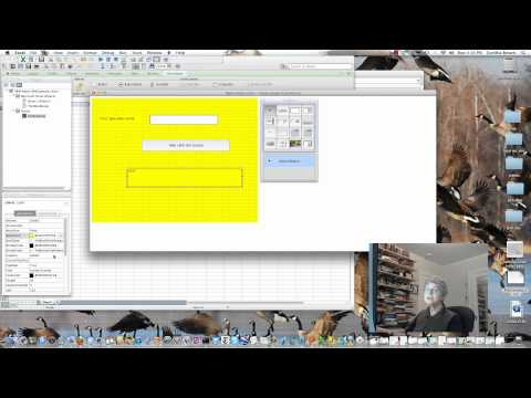 Add Controls to a User Form (Excel 2011 Mac).mp4