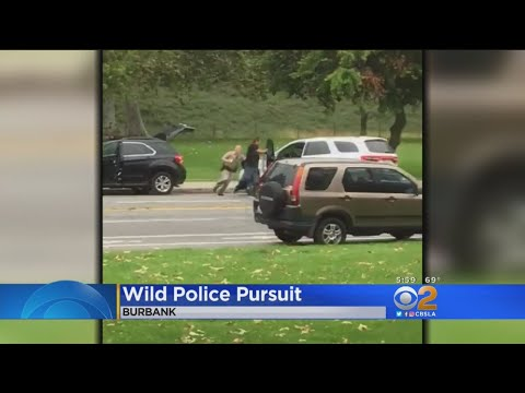 Caught On Camera: Carjacking Suspect Arrested After Wild Pursuit, Struggle With CHP Officer In Burba