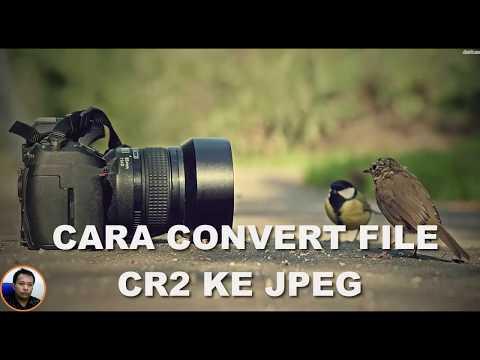 Cara Mengconvert Gambar CR2 yang dari Kamera DLSR Canon ke JPEG