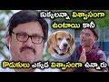 కుక్కలన్నా విశ్వాసంగా ఉంటాయి కానీ కొడుకులు ఎక్కడ  - Latest Telugu Movie Scenes - Rajendra Prasad