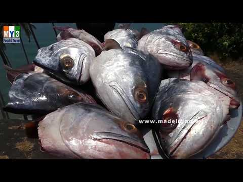 #Never Seen Before | Making 16 Big Fish Heads Barbecue | FISH HEAD GRILLED BBQ