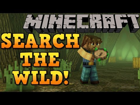 Minecraft: FIND ALL THE RESOURCES YOU SEEK! Nature's Compass Mod Showcase!