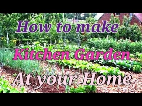 How to make a small kitchen garden at your home.