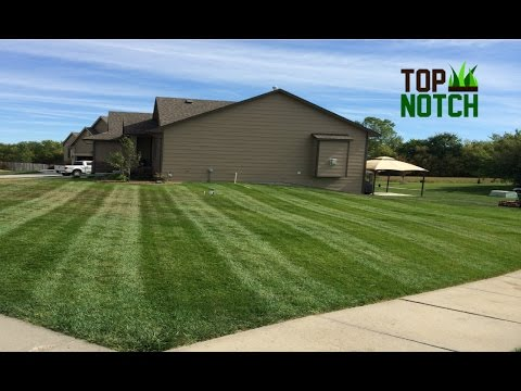 Best Time to Start Lawn Care Business