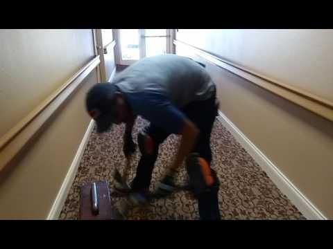 Double stick glue down carpet installation with border, Las Vegas.