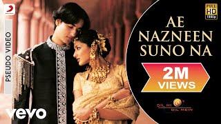 A.R. Rahman - Ae Nazneen Suno Na Best Audio Song|Dil Hi Dil Mein|Sonali Bendre|Abhijeet