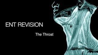 ENT Revision - The Throat