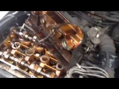 Oil on spark plugs, valve cover gasket, distributor cap/rotor change
