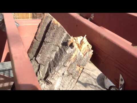 Treehouse Platform Deck Frame, First Look Around