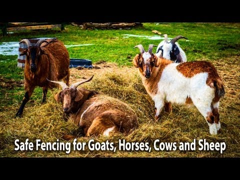 Best Fence for Goats, Cows, Horses, and livestock, woven wire, high tensile Electric Capable