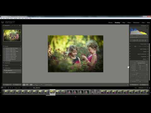 How to Add a Vignette in Lightroom Video 2