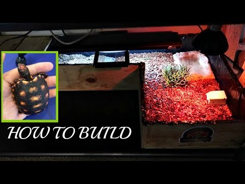 How To Build A Tortoise Table