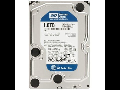 Western Digital Blue 1TB Hard Drive Unboxing