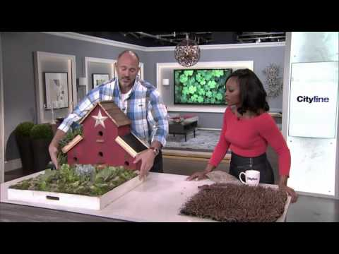 How to green your roof