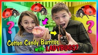 Huge Cotton Candy Burritos With Ladybugs  We Are The Davises