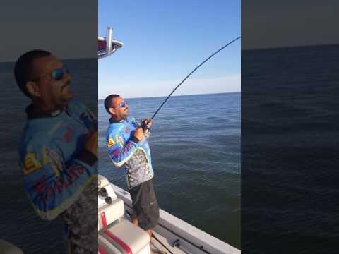 Texas red fish ( trinity bay)