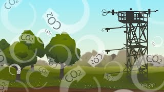 Eddy Covariance: Measuring an Ecosystem