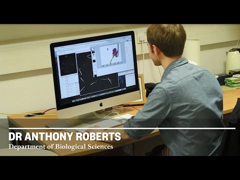 A day in the life...Dr Anthony Roberts