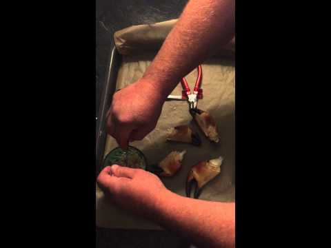 How to clean crab claws