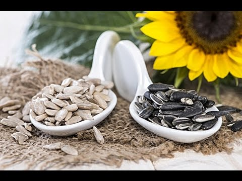 HEALTH BENEFITS OF SUNFLOWER SEEDS THAT WILL SURPRISE YOU! TRY IT TO BELIEVE IT!