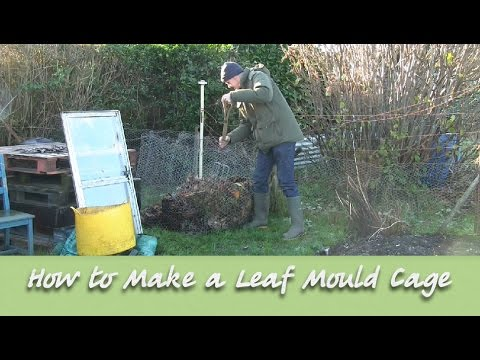 The Allotment Garden - How to Make a Leaf Mould Cage