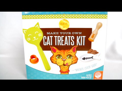Make Your Own Cat Treats Kit from MindWare