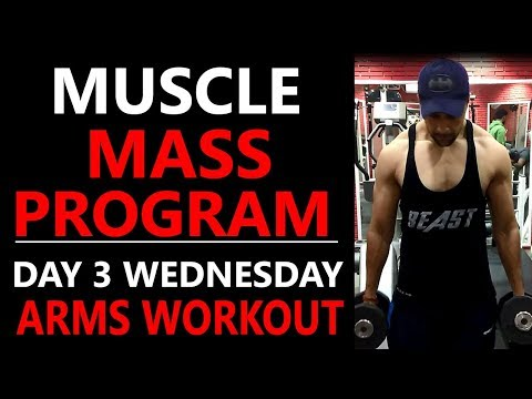 Arms size gain workout/biceps and triceps size gain workout/best arms workout/full arms workout plan