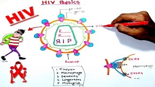 HIV BASIC STRUCTURE AND CLINICAL IMPORTANCE