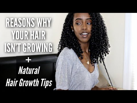 REASONS WHY YOUR HAIR ISN'T GROWING | Natural Curly Hair Growth Tips