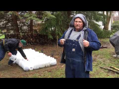 A Cool Trick for Winter Sowing Perennials