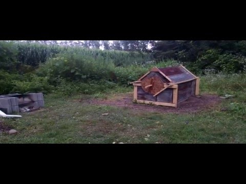 Building a Pig Roaster and Cooking a Pig over charcoal, tips and suggestions