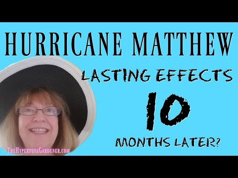 Hurricane Matthew - Lasting Effects