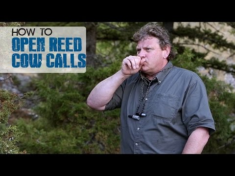 How to Use Open Reed Cow Calls - Dieter Kaboth