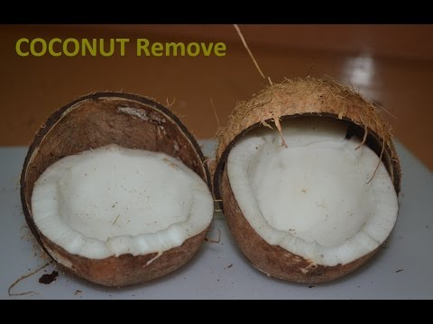 INDIAN Easiest Open COCONUT Remove for Shell in Seconds & Street FOOD