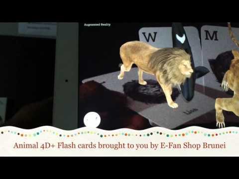 Animal 4D Flash Card - Exclusive video by E Fan Shop Brunei