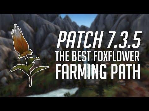 The Best Foxflower Farming Path Patch 7.3.5